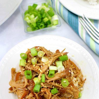 The Best Crock Pot Teriyaki Chicken Recipe