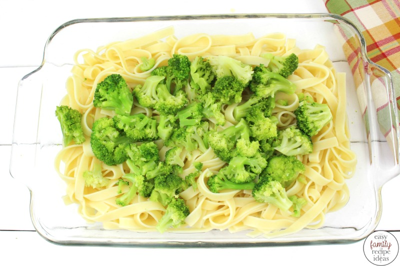 This Broccoli Chicken Alfredo Fettuccine recipe is one that you're going to love. It's simple, hearty, delicious and a perfect meal for the whole family! Chicken Alfredo Fettuccine, Once you make this scrumptious chicken alfredo recipe your family will beg you to make it over and over again! Perfect for a fall dinner or a hearty meal during the winter