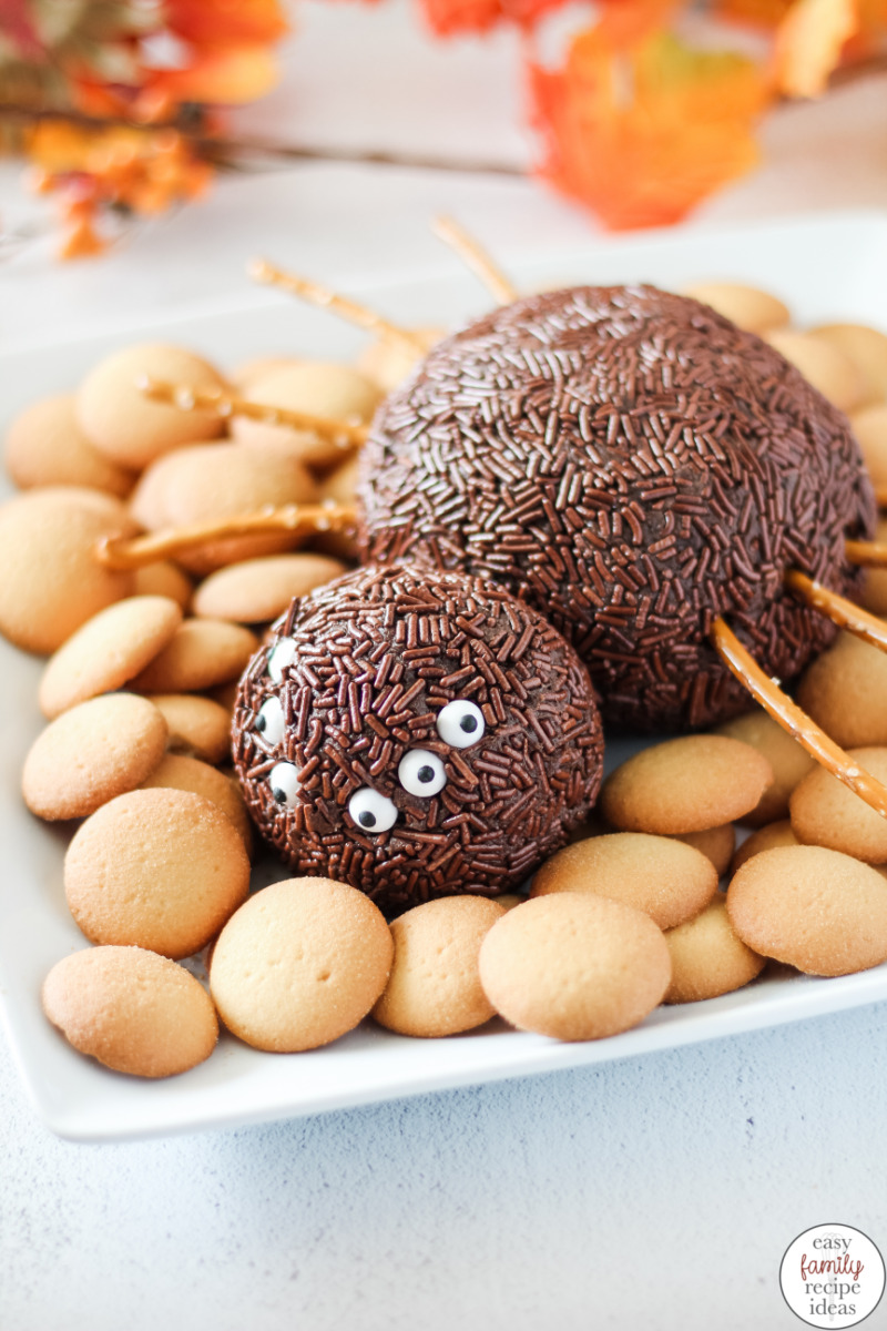 This Chocolate Spider Cheese Ball is a dessert cheese ball you'll want to serve with cookies or apple slices. The peanut butter, chocolate, and cream cheese in this recipe make it a decadent Halloween Dessert perfect for kids and any party guests will be talking about for days! The Best Spider Cheese Ball for Halloween