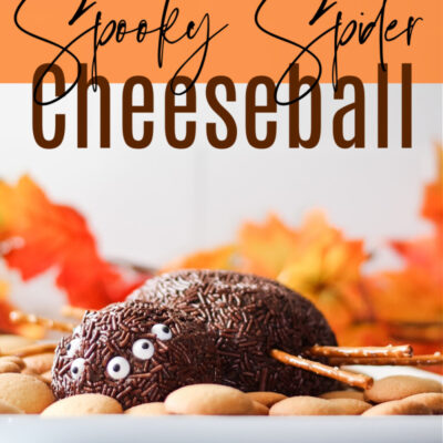 Chocolate Spider Cheese Ball for Halloween