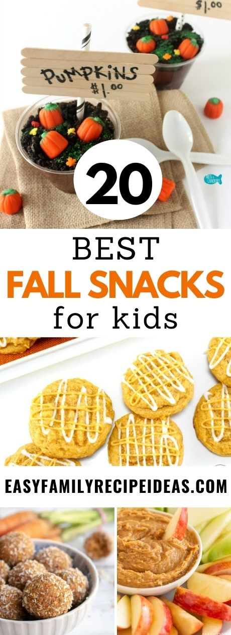 Whether you are looking for something healthy to eat, something sweet, or something that's fun and festive these easy fall snack ideas will help you make snack time the best food of the day. From caramel and apples to pumpkin spice recipes these fun fall snack ideas will make everyone in your family happy.